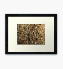 Dog fur Framed Print