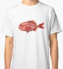 Fish - Orange Roughy (Hoplostethus atlanticus) Classic T-Shirt