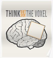 Think Outside the Voxel Poster