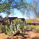 Apache Junction Ghost Mine - Arizona by Laurast