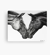 Kissing Time Canvas Print