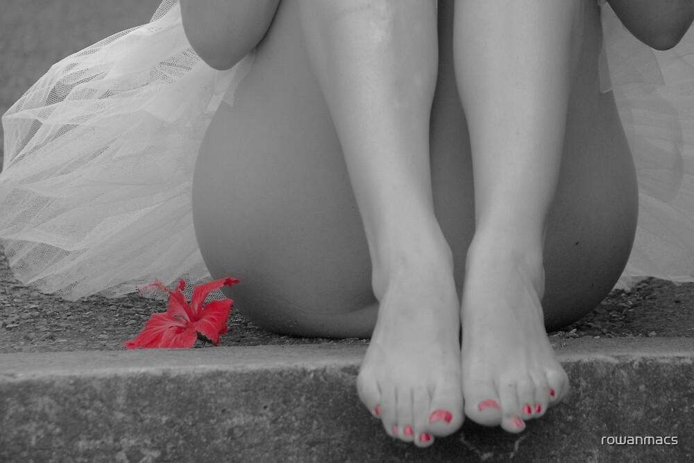Petals by rowanmacs