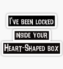 Nirvana - Heart Shaped Box Sticker