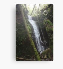 Falling Water Canvas Print