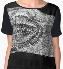 Paleontology Chiffon Top