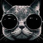 « Meow Me-Yeahhhh... » par TEAMG33K