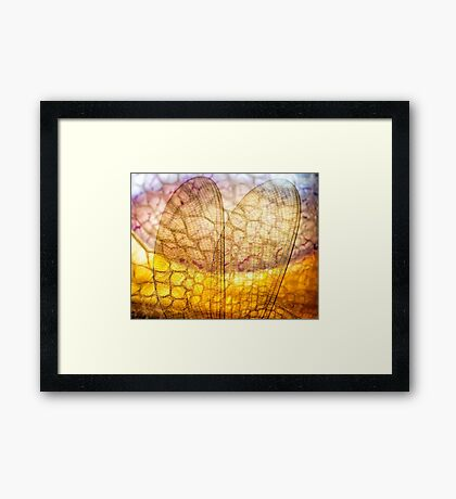 Before the Nightingale Sings Framed Print