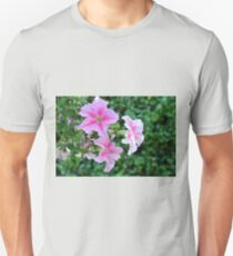 Pink flowers macro, natural background. Unisex T-Shirt