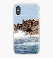 Australische Pelzrobben, Bruny Island iPhone-Hülle & Cover