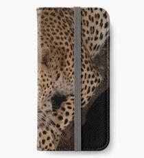 Leopard 1 iPhone Wallet/Case/Skin