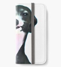 Kermit Dogboy iPhone Wallet/Case/Skin