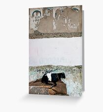 Wallscape, Cochin India Greeting Card