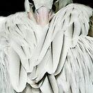 Albino Pelican Detail #1 by Gregory Colvin