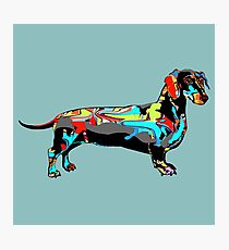 Graffiti Dachshund  Photographic Print