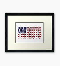 Patriots Framed Print