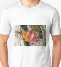 Maple leaf coloured from the Autumn over wooden trunk. T-Shirt