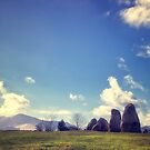 Standing Stones  by Vicki Field