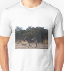Grevy's zebra (Equus grevyi) Unisex T-Shirt