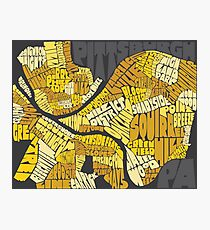 Pittsburgh Neighborhood Map Photographic Print
