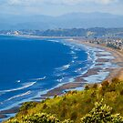 Ohope Beach Overlook by Barbara  Brown