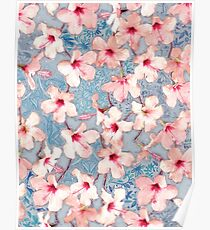 Shabby Chic Hibiscus Patchwork Pattern in Pink & Blue Poster