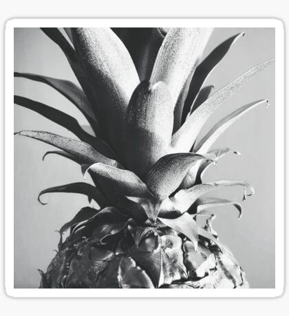 Silver Pineapple Sticker