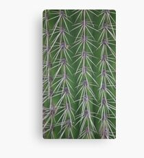 Touch me if you dare Canvas Print