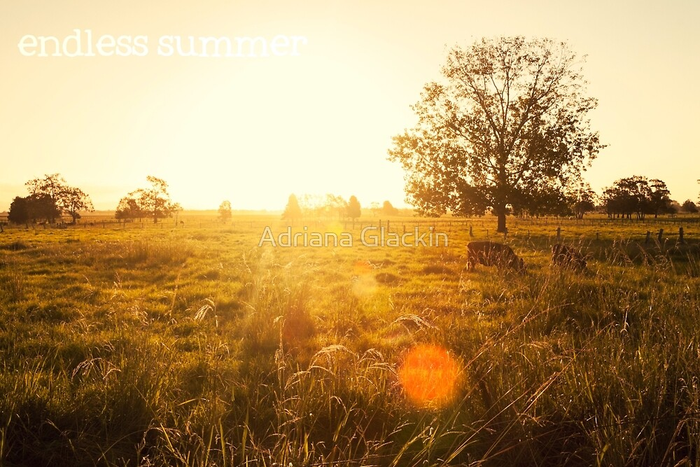 endless summer by Adriana Glackin