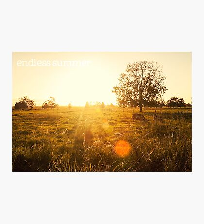 endless summer Photographic Print