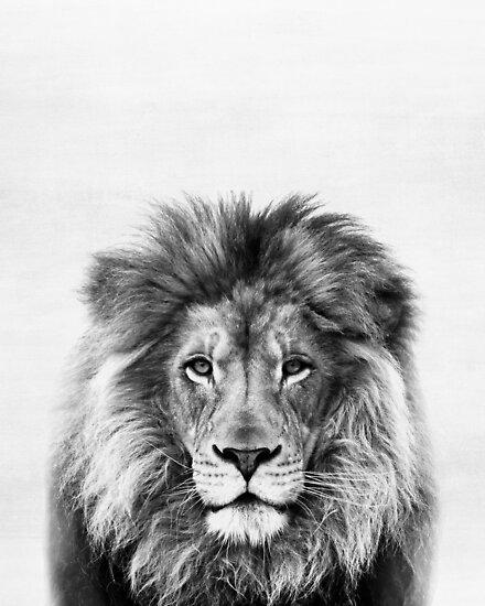 Löwe von juliaemelian