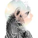 Zebra // Dreaming by Amy Hamilton