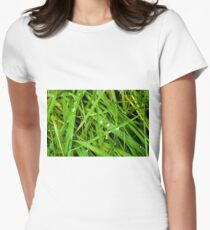 Winter Grass Womens Fitted T-Shirt