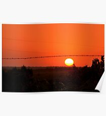 Barbed Wire at Sunset Poster