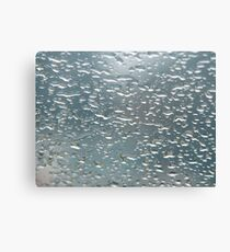 Windscreen art Canvas Print