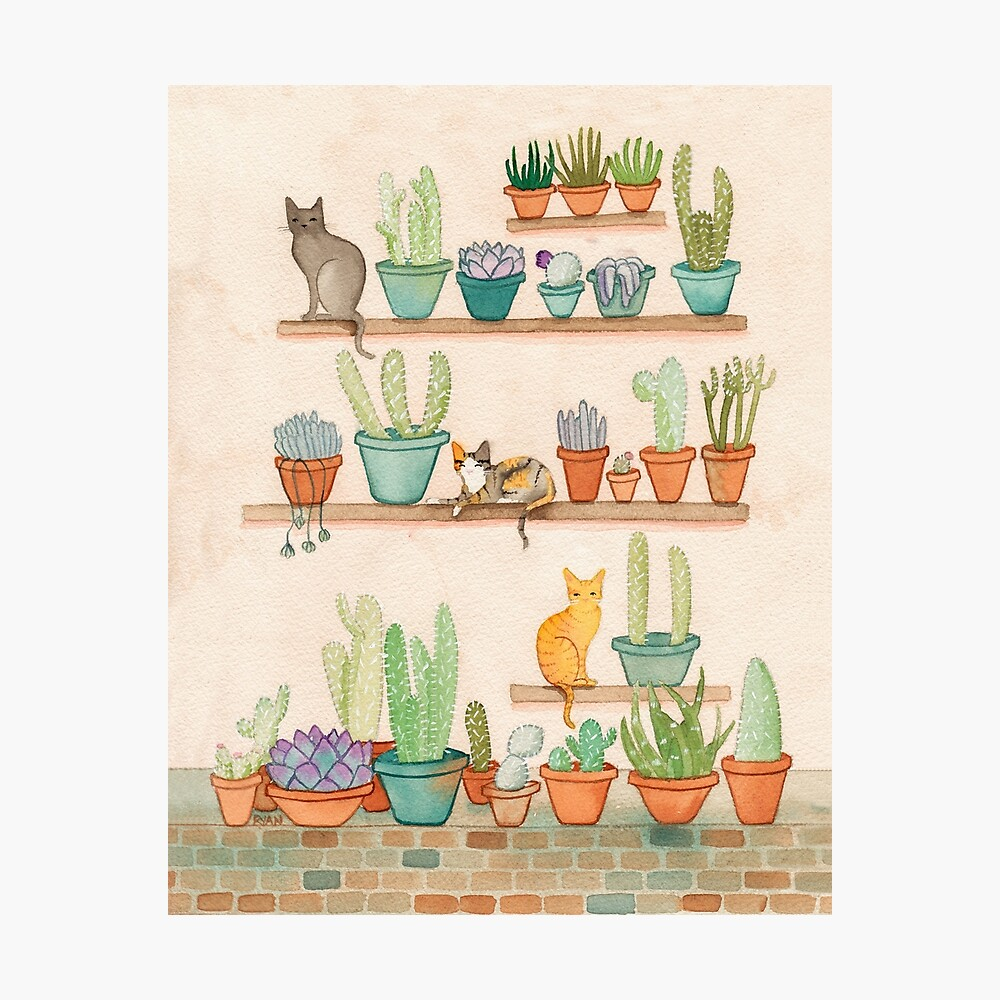 Cats and Cacti Photographic Print