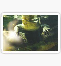 Gator Sticker