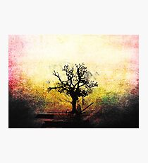 Grunge Tree Photographic Print