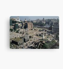 Forum from Farnese Gardens Palatine Hill Rome Italy 19840719 0014  Metal Print