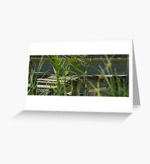 The Lost Jetty 2015 Greeting Card