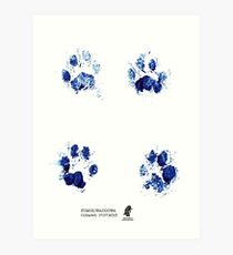 Fishing Cat Pug Marks - Wadduwa Art Print