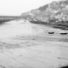 Grey Harbour by Evelyn Flint