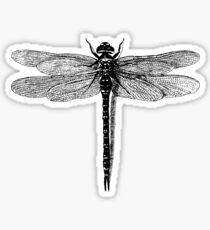 Dragonfly Sticker
