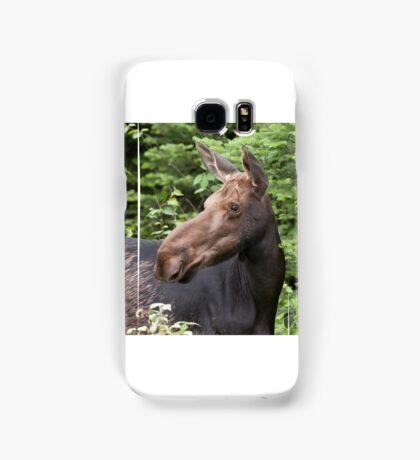 Moose close-up - Algonquin Park Samsung Galaxy Case/Skin