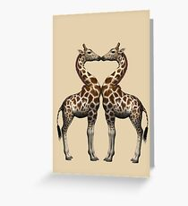 Giraffes In Love Greeting Card