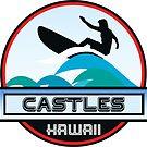 Surf Surfing CASTLES OAHU HAWAII Surf Surfer Surfboard Waves Ocean Beach Vacation Stickers by MyHandmadeSigns