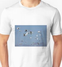Mute Swans in Flight Unisex T-Shirt