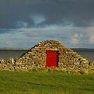 Red Door by lukasdf