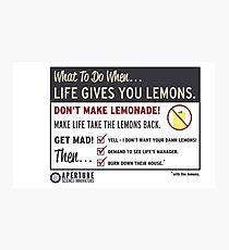 Lemons, portal 2 Photographic Print