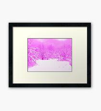Pink Pop of Winter  Framed Print