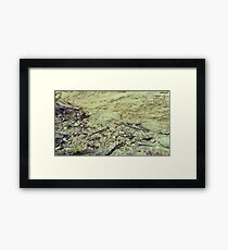 Textures of Earth Framed Print